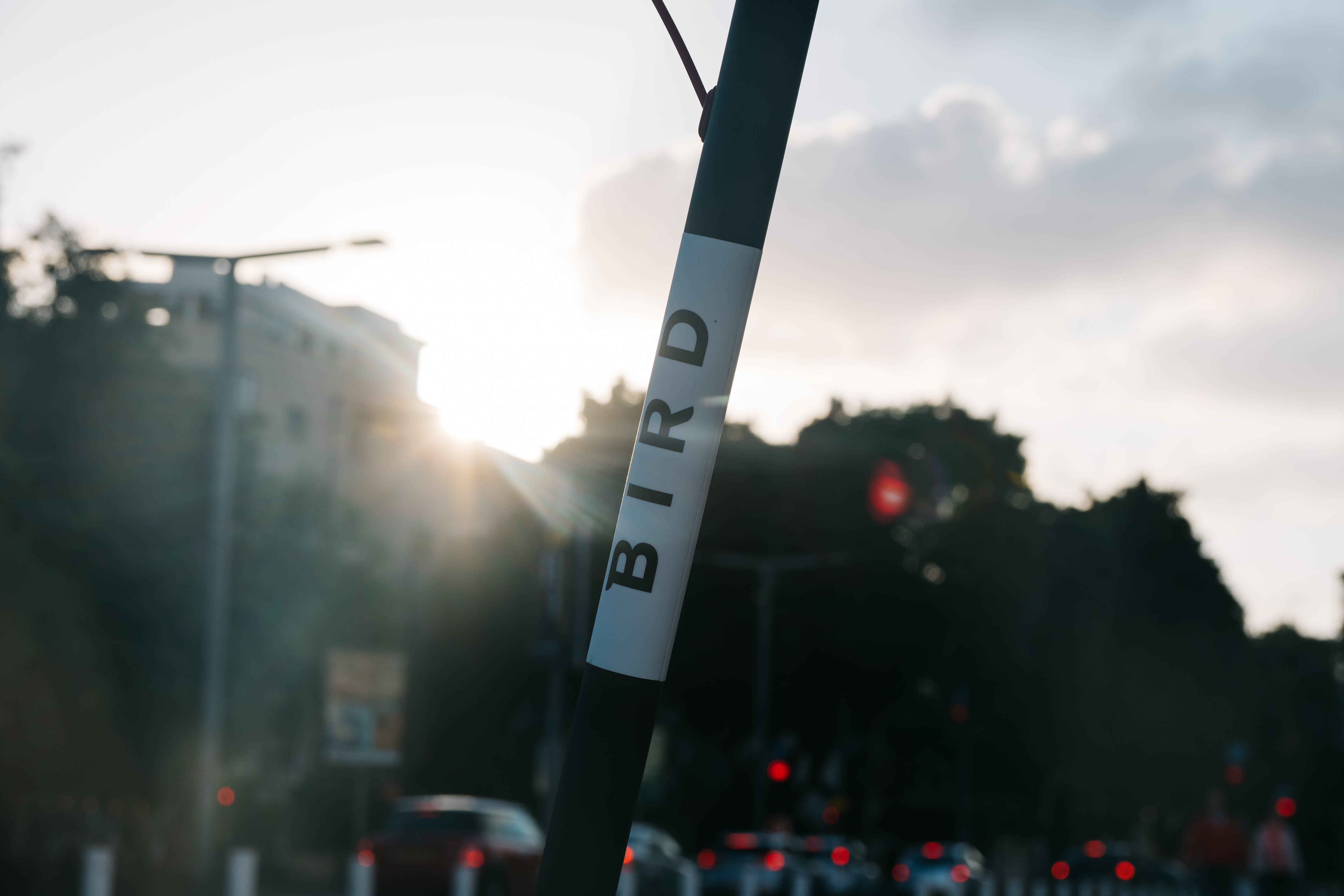 Foto d'estoc gratuïta de au, carrer, ciutat, e-scooter