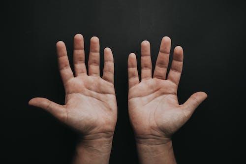 Безкоштовне стокове фото на тему «долоні, долонь (рука), руки, шкіра»