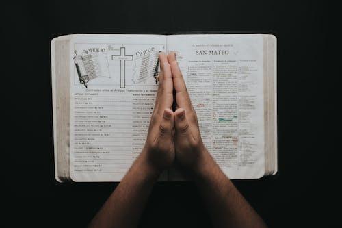 Gratis lagerfoto af bede, Bibel, bog, hellige skrifter