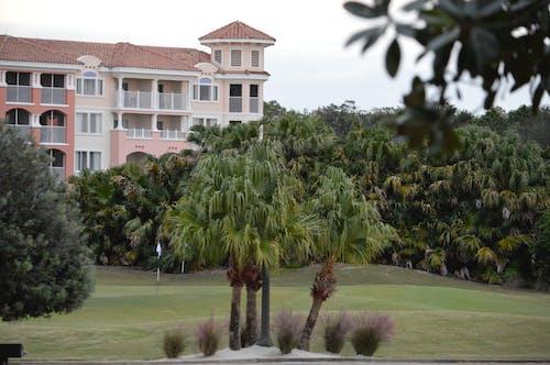 Darmowe zdjęcie z galerii z kurort, palmy, pole golfowe