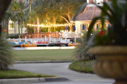 Darmowe zdjęcie z galerii z brzeg jeziora, jezioro, łodzie, pole golfowe
