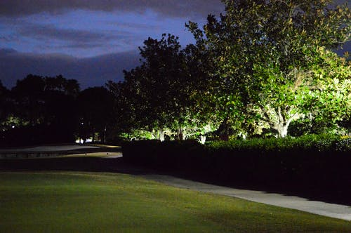 Darmowe zdjęcie z galerii z droga utwardzona, drzewa, noc