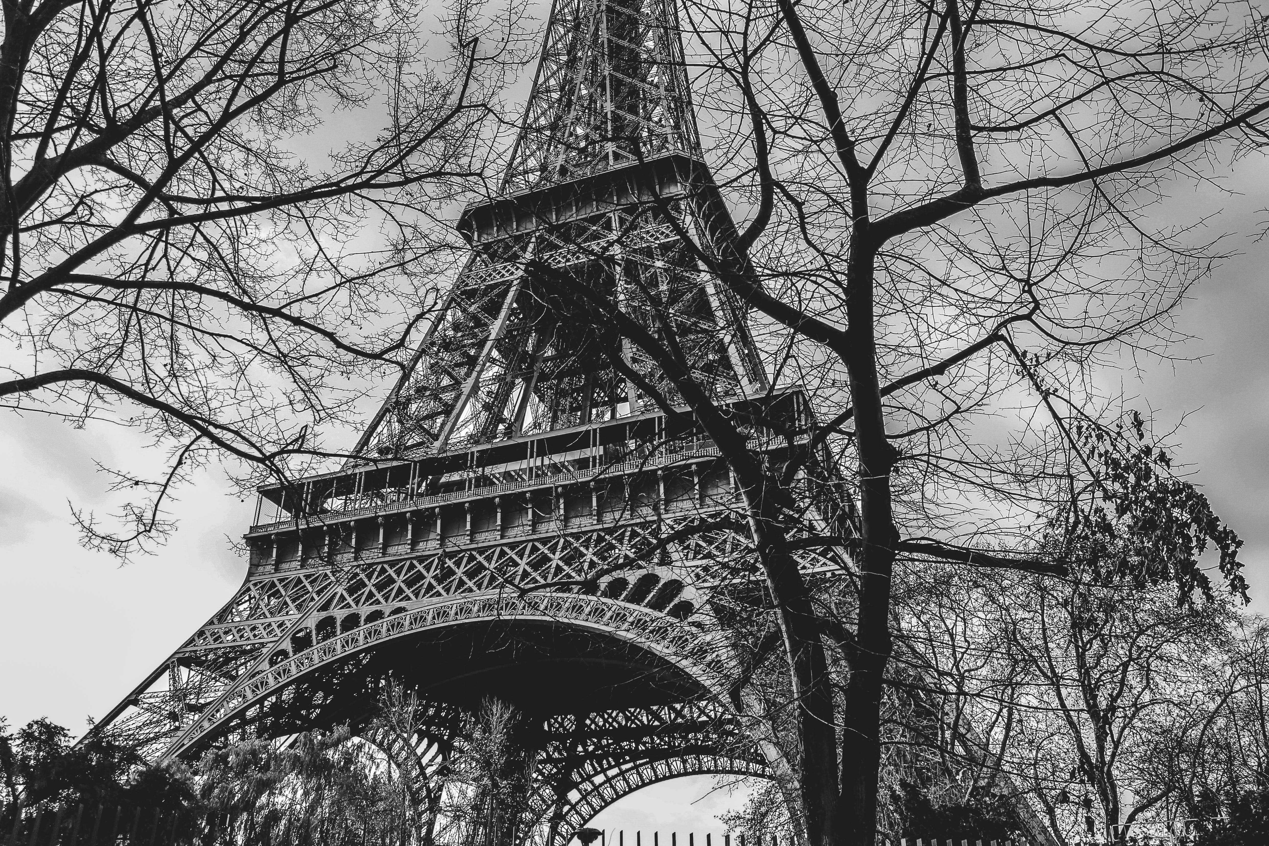 Free stock photo of arquitecture, black and white, eiffel tower, france