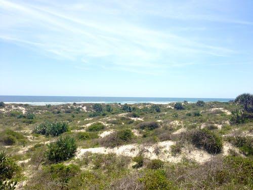 Free stock photo of dunes, florida beach, ocean