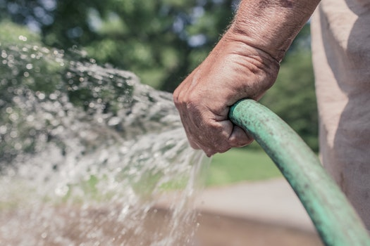 Free stock photo of man, hand, garden, hose