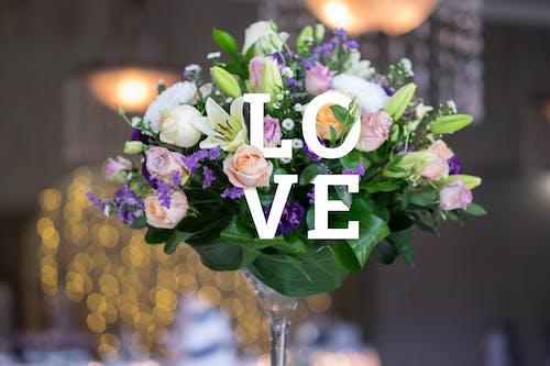 Free stock photo of bouquet, decor, flower, love