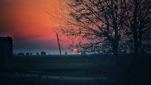 Free stock photo of landscape, nature, sunset