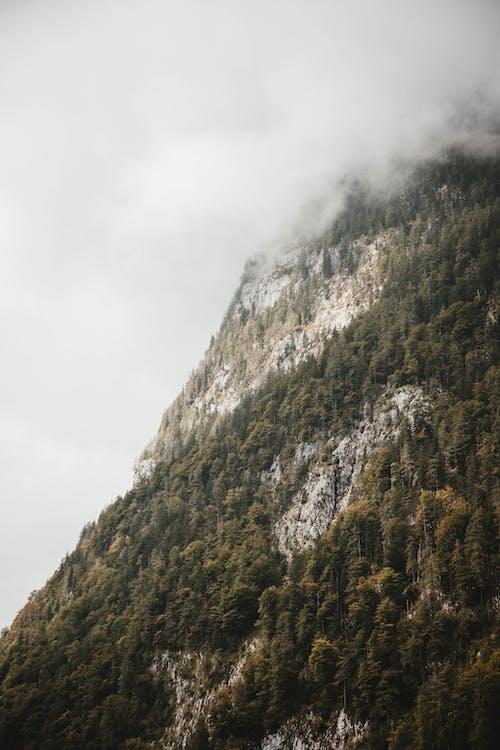 äventyr, bakgrund, berg