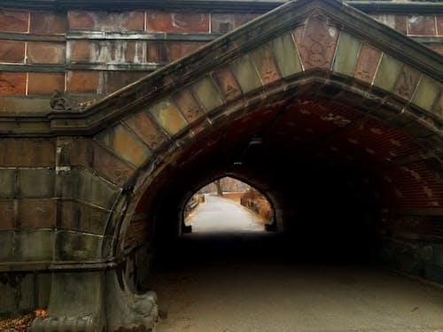 Foto d'estoc gratuïta de Central park, Nova York, pont