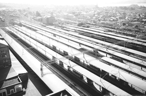 Free stock photo of black and white, city, railway lines, railway platform