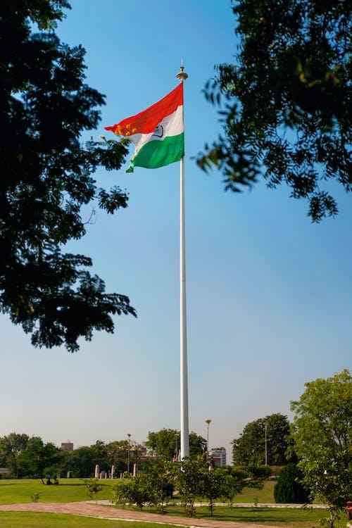 Free stock photo of blue, delhi, green, hude