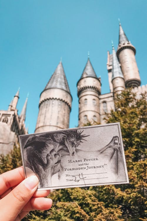 Gray Harry Potter Ticket