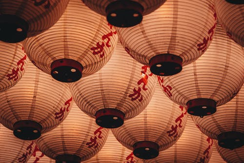 White Chinese Lantern Photography