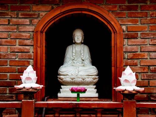 Free stock photo of pagoda, zen