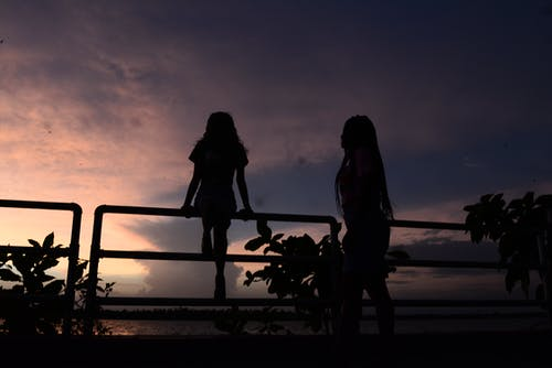 Free stock photo of friendship, nature photography, silhoutte