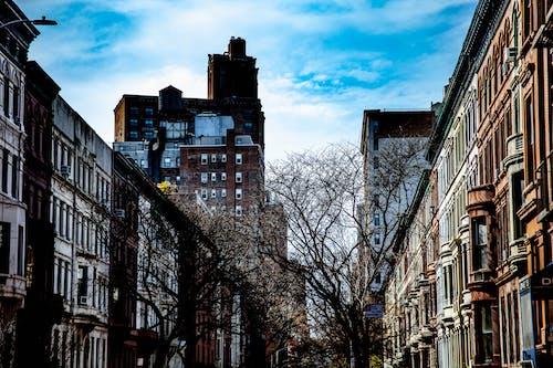 Free stock photo of buildings, midtown, street