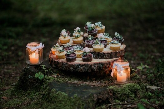 Cupcakes and Candles on Stump Surrounded by Moss