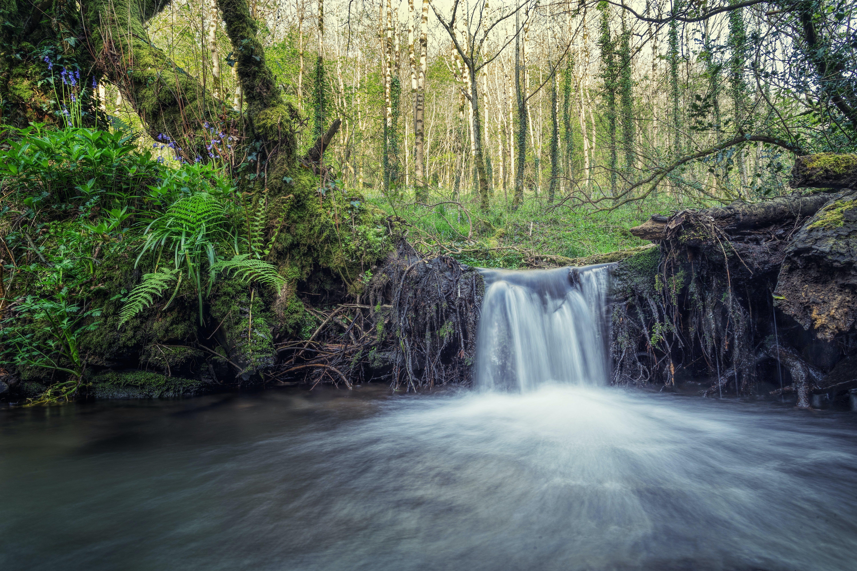 Kostenloses Stock Foto zu fluss, landschaftlich, natur, strom
