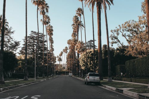 Δωρεάν στοκ φωτογραφιών με Los Angeles, αστικός, άσφαλτος, αυγή