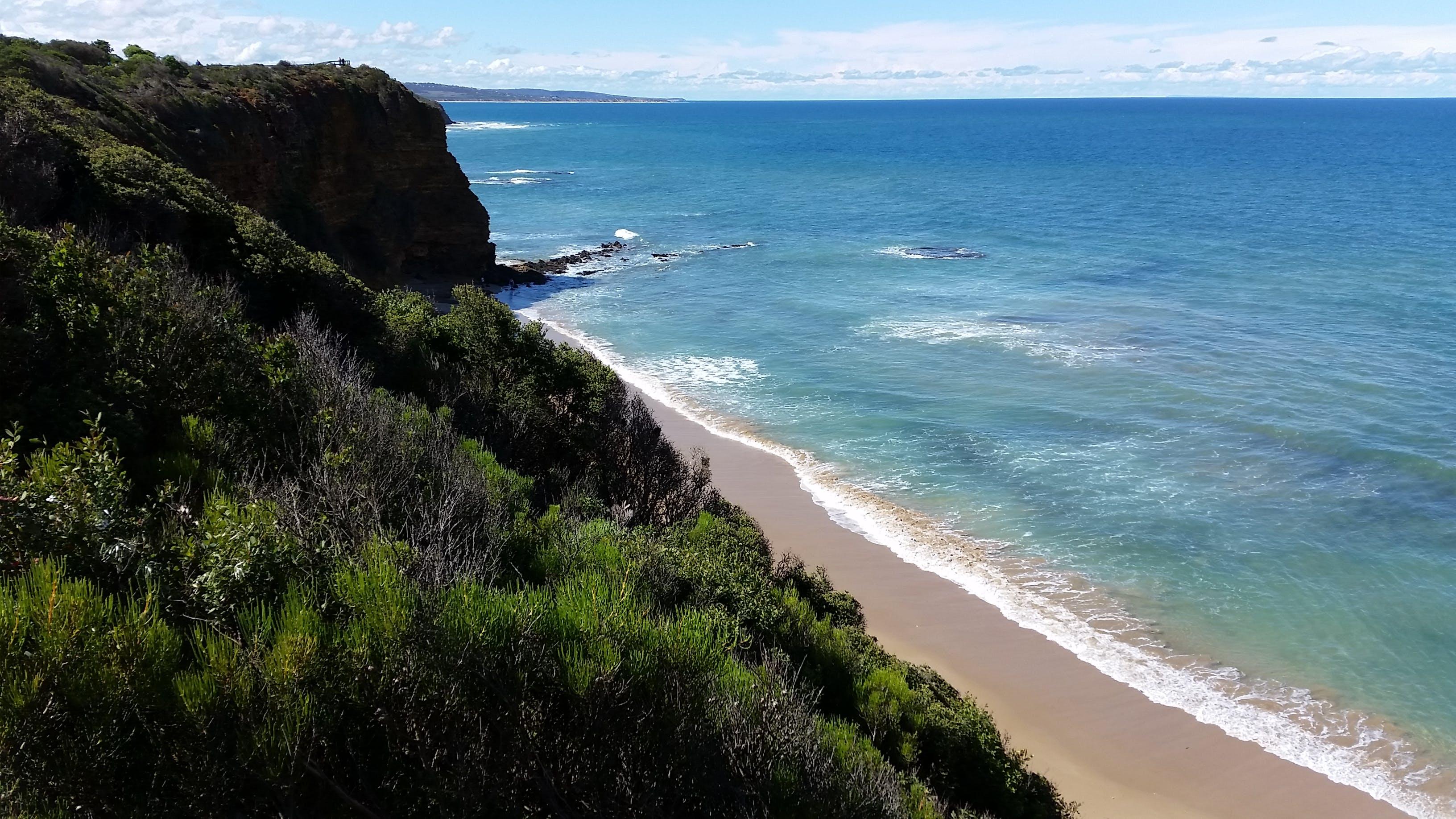 australia, beach, coast