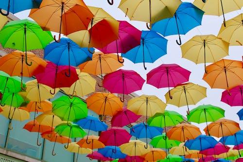 Foto profissional grátis de cor, cores do arco-íris, guarda-chuvas