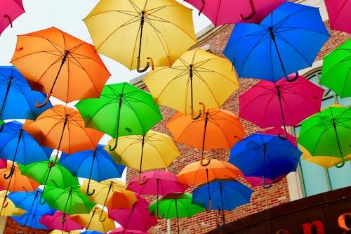 Бесплатное стоковое фото с зонтики, цвет, цвета радуги