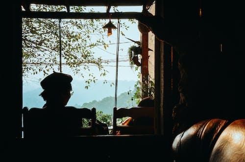 Gratis stockfoto met achtergrondlicht, binnenshuis, dageraad, daglicht