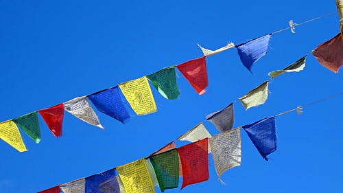 Free stock photo of Ladakhi flags