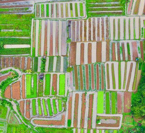 Δωρεάν στοκ φωτογραφιών με background, drone, vintage, αγρόκτημα