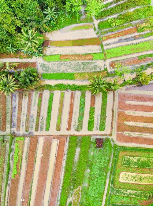 Δωρεάν στοκ φωτογραφιών με background, drone, drone cam, vintage