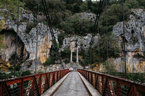 Ảnh lưu trữ miễn phí về cầu treo, cầu đi bộ, cây, cơ sở hạ tầng
