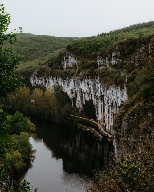 Imagine de stoc gratuită din apă, apă curgătoare, arbori, canion