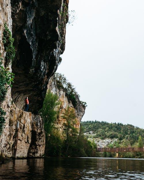 강, 경치가 좋은, 나무, 동굴의 무료 스톡 사진