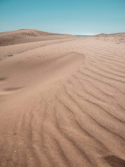 Foto Der Wüste Während Des Tages