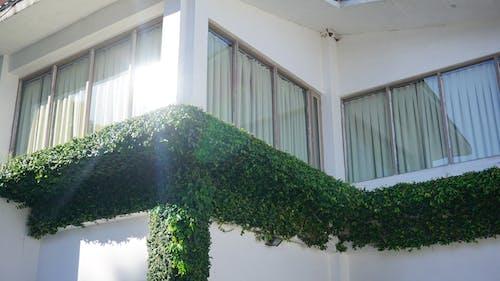 Foto profissional grátis de arquitetura, brilho, brilho de luz, brilho do sol