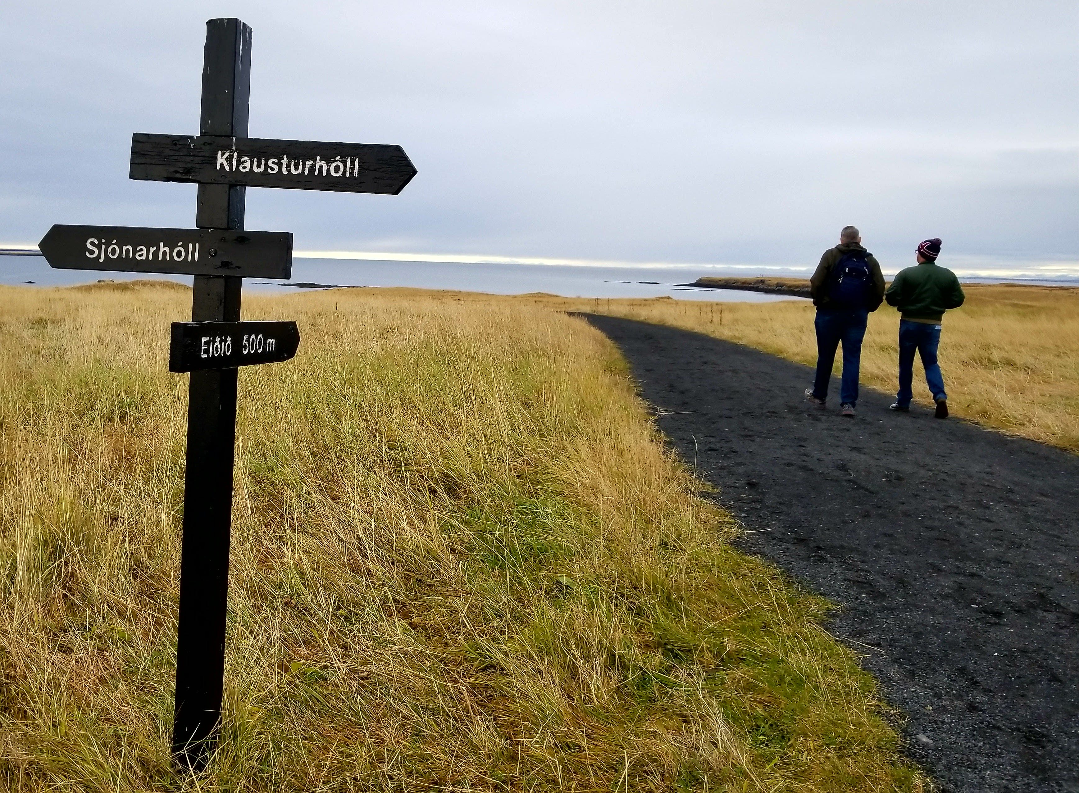 Free stock photo of desolate, grass, iceland, path