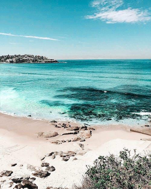 Foto profissional grátis de água, areia, Austrália, beira-mar