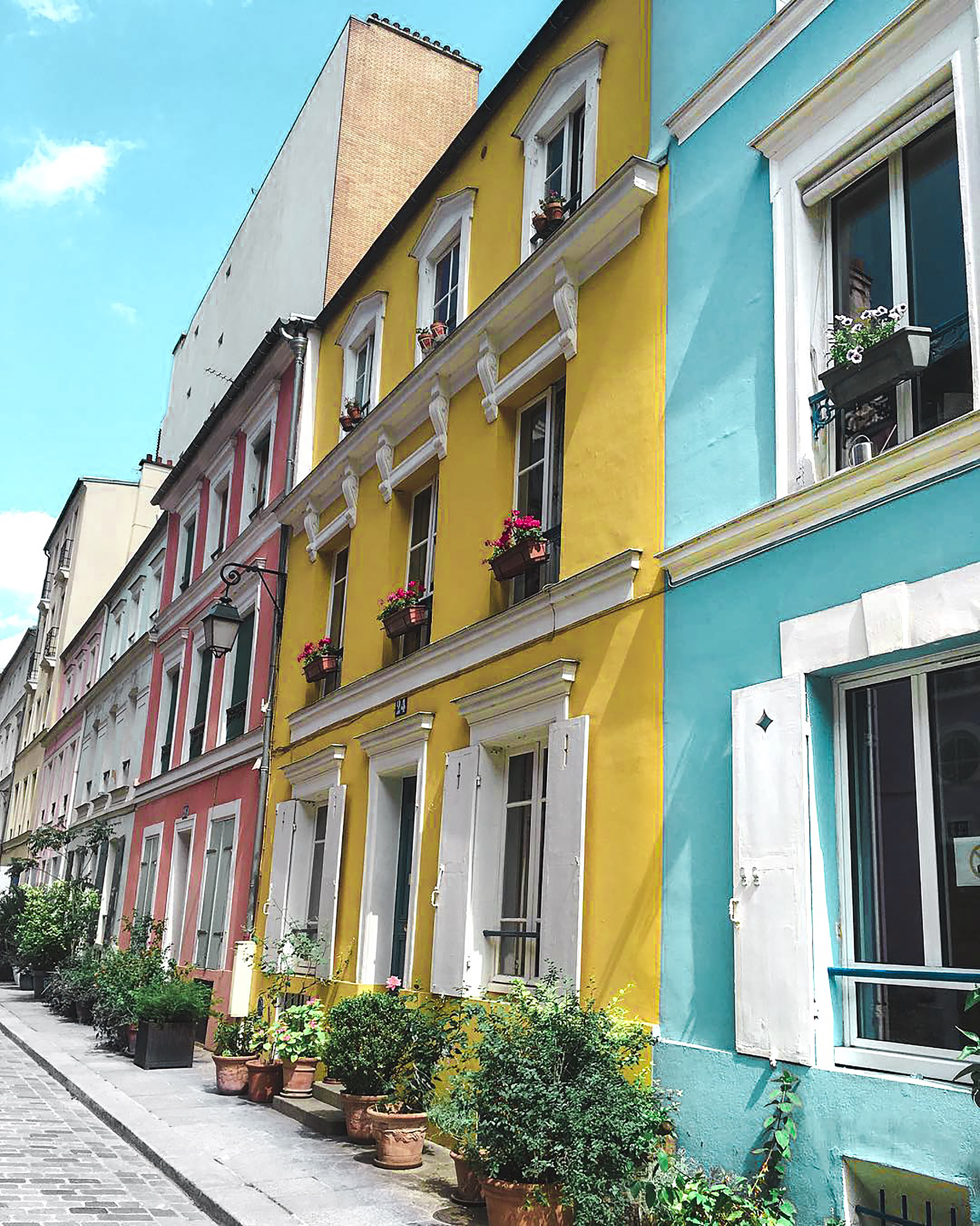 Multicolored Painted of Houses