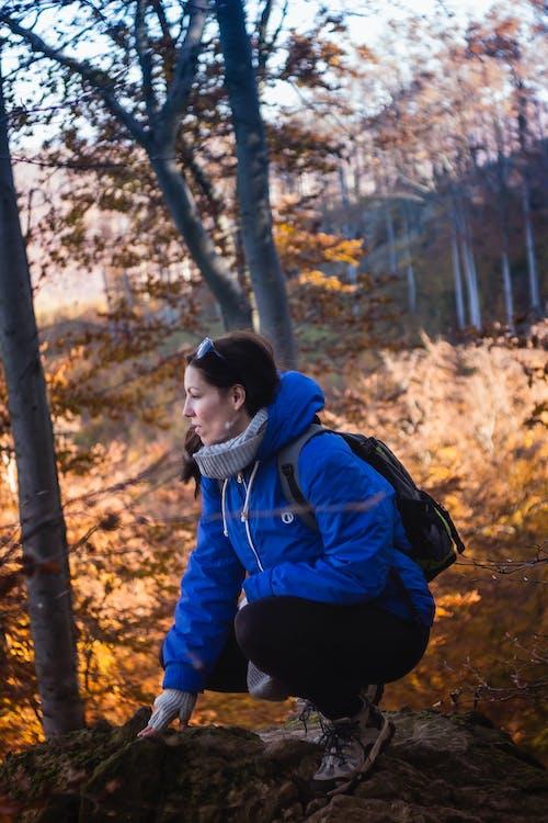 Darmowe zdjęcie z galerii z drzewa, dziewczyna, kobieta, las