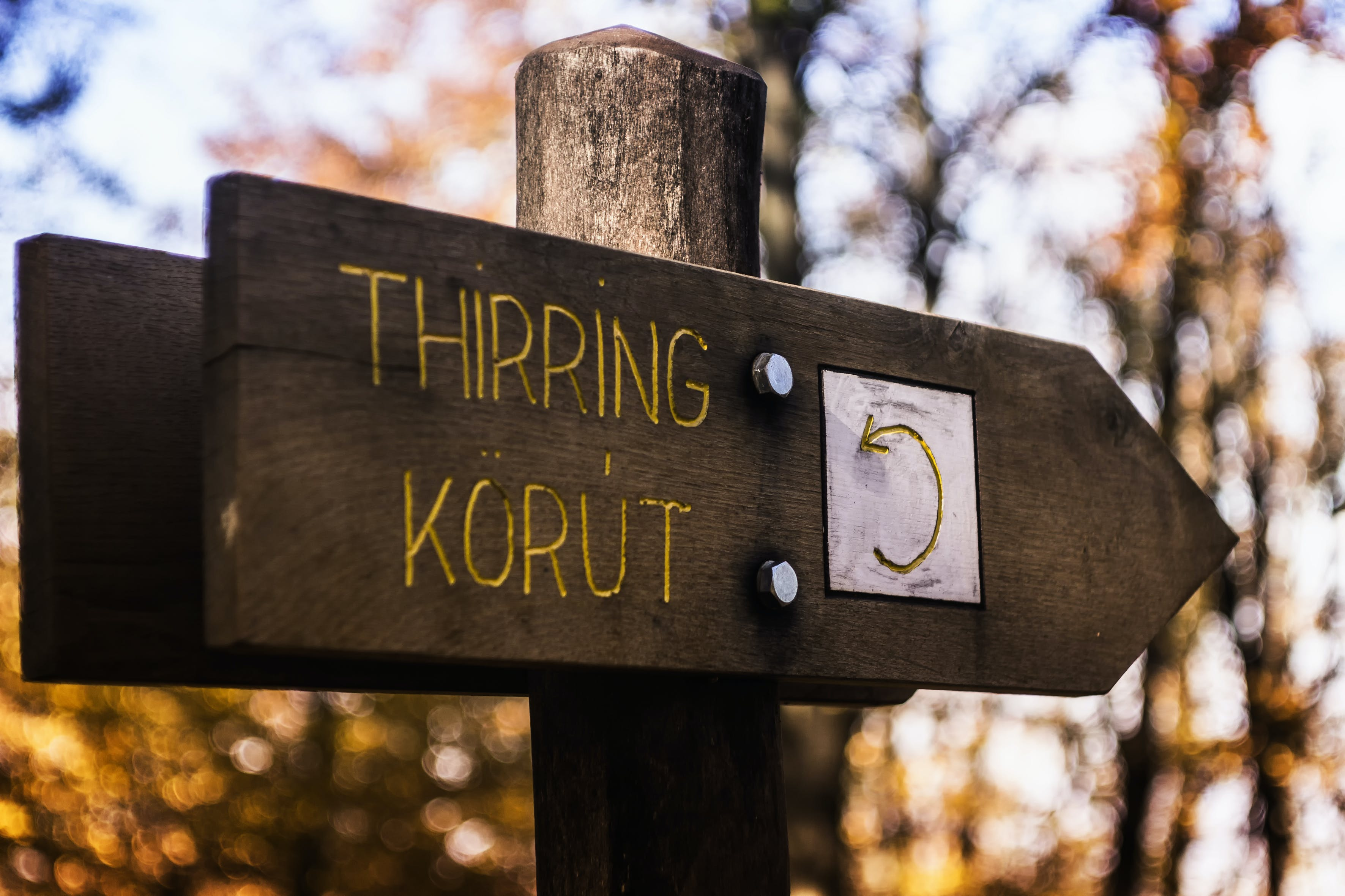 Thirring Korut Wooden Signage