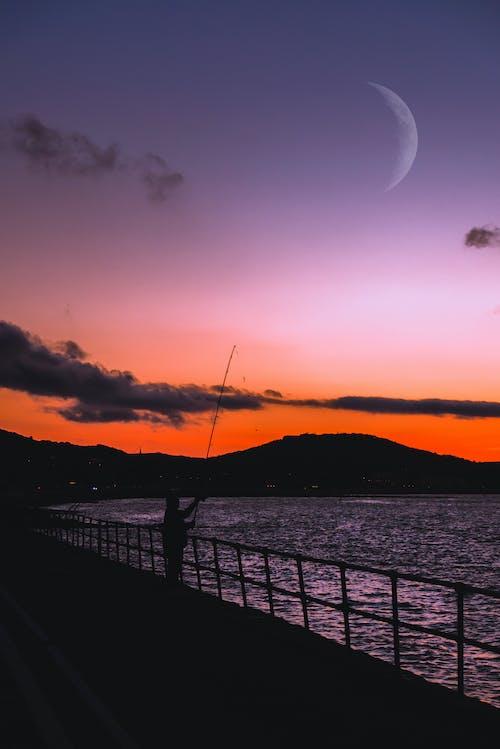 ゴールデンホライズン, のどか, ビーチ, レクリエーションの無料の写真素材