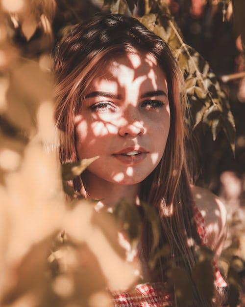 Бесплатное стоковое фото с женщина, красивый, красота, модель