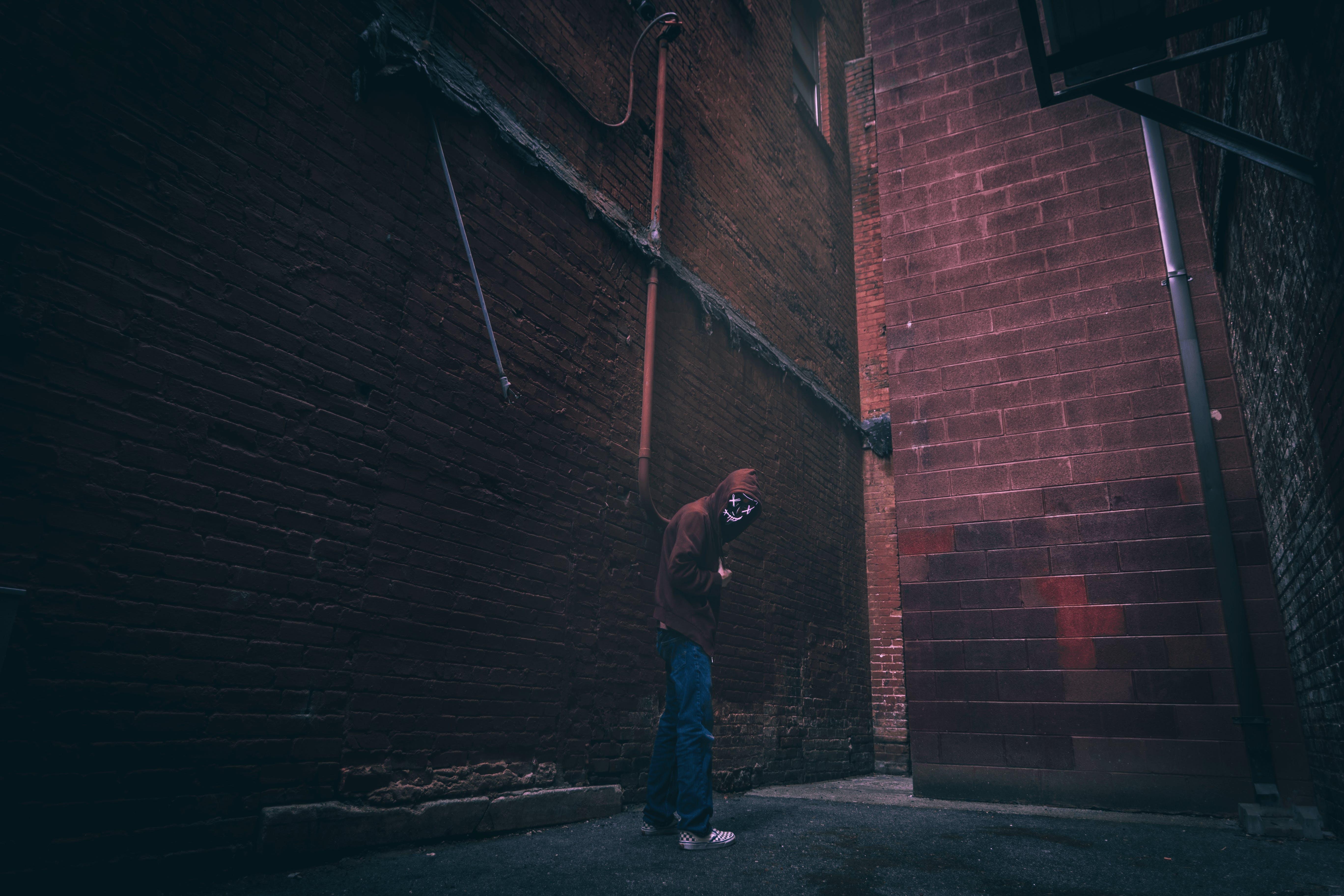 Základová fotografie zdarma na téma aleji, budova, červená, červená zeď