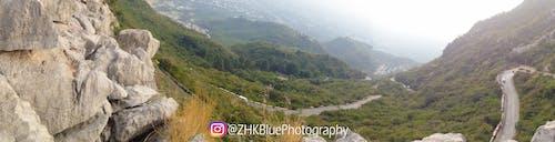 #自然, zhkブルーローズ, zhkブルーローズ写真, イスラマバードの無料の写真素材