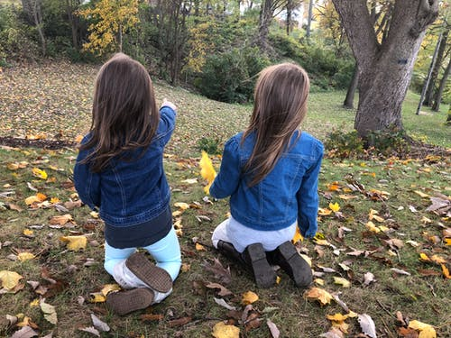 Free stock photo of daughter, fall, fall colors, family