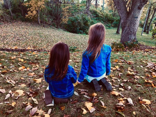 Free stock photo of fall, fall colors, family, girls