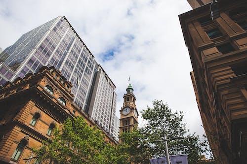 Free stock photo of clock tower, modern buildings, sky