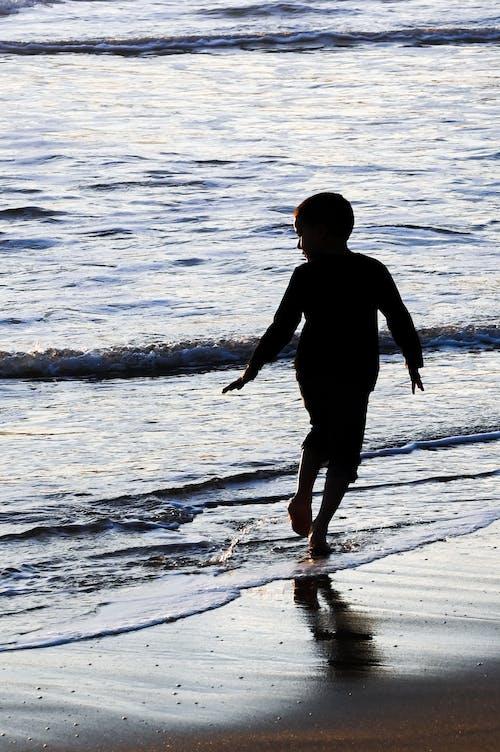Δωρεάν στοκ φωτογραφιών με θάλασσα, παραλία, πίσω, πλάτη