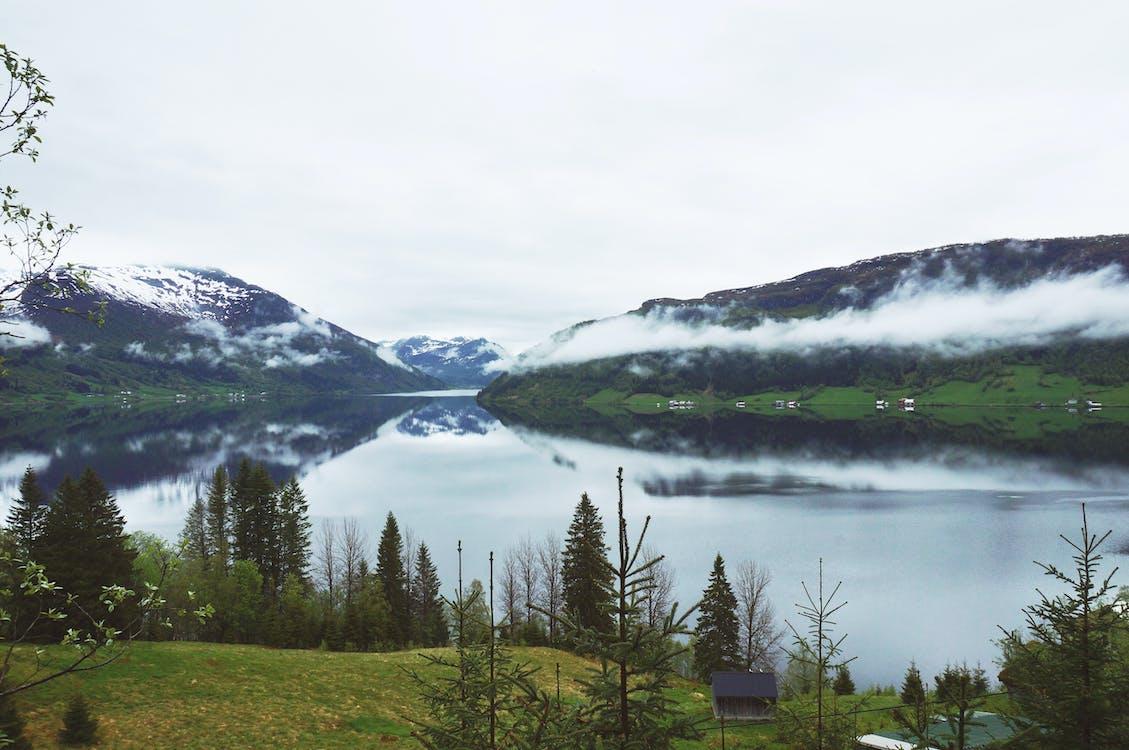 αντανακλάσεις, βουνά, γρασίδι