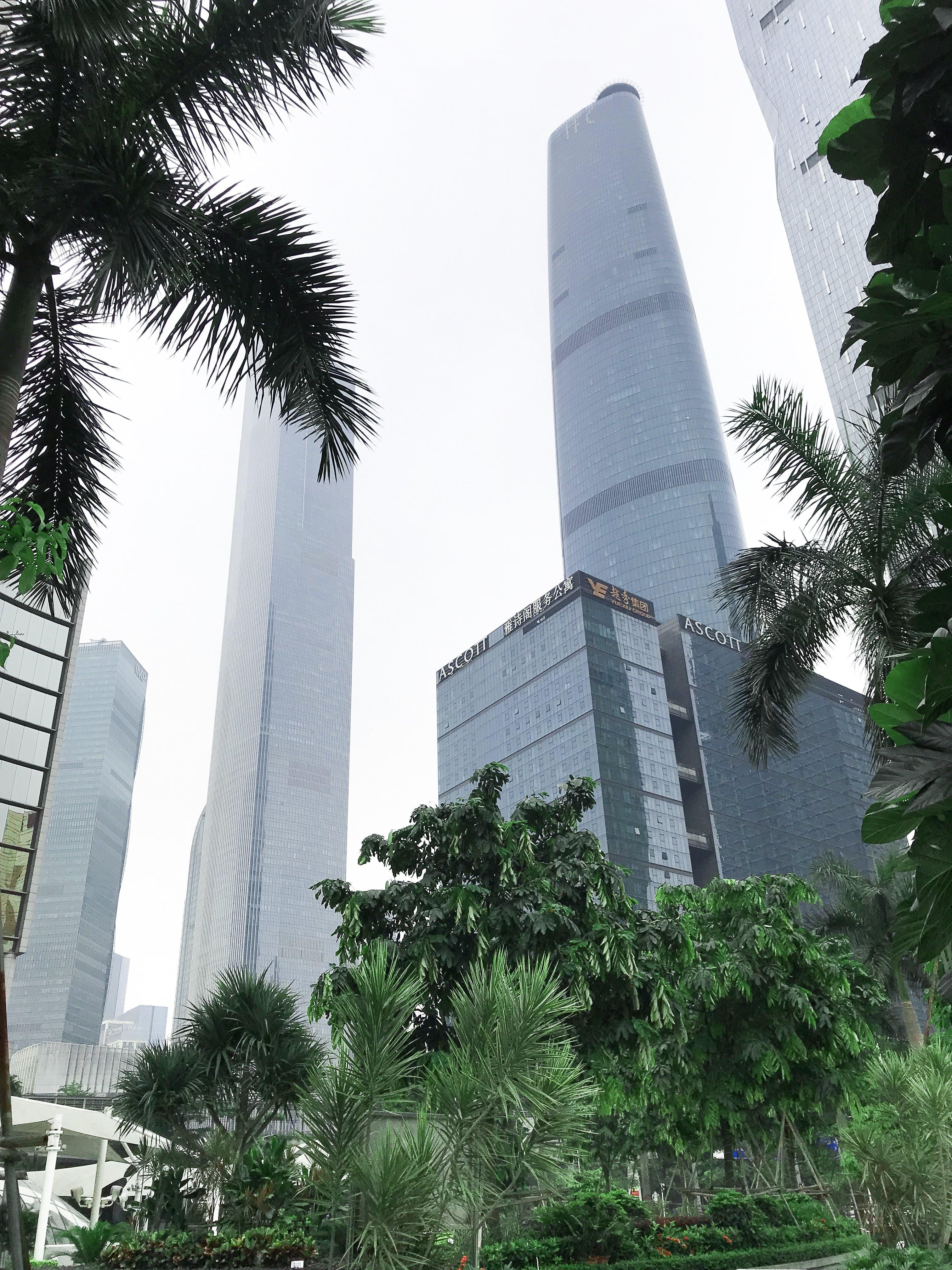 Foto d'estoc gratuïta de amb boira, arquitectura, boira, ciutat